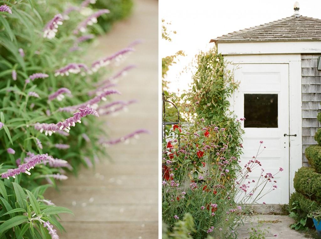cape_cod_flower_garden_fine_art_film_photographer_heidivail