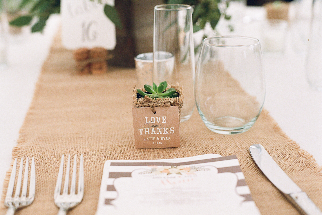 30_succulent_wedding_favor_plants_gifts_burlap_cape_cod_photography