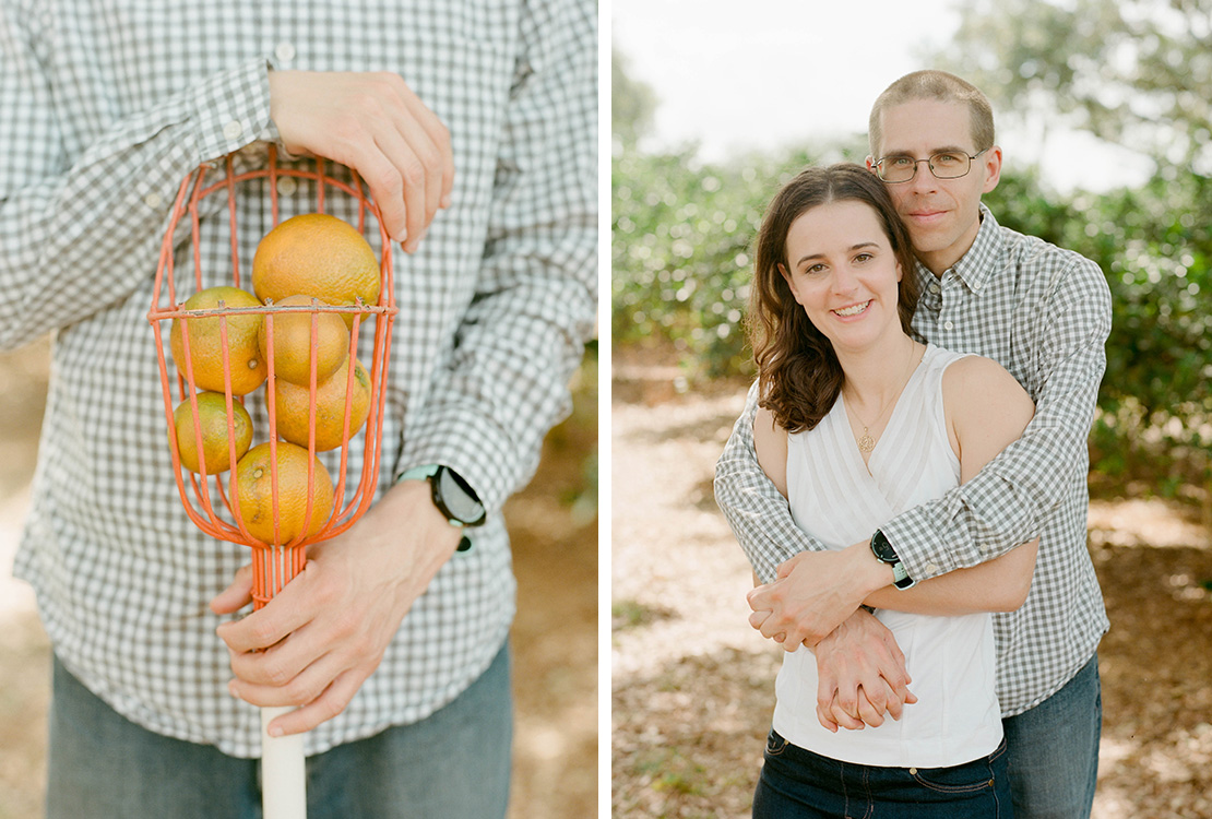 02_Showcase_citrus_engagement_session_wedding_photographer_orlando_florida_orange_picking