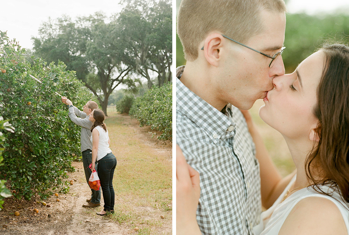 04_u_pick_oranges_showcase_citrus_orlando_engagement_session_fine_art_wedding_phootography