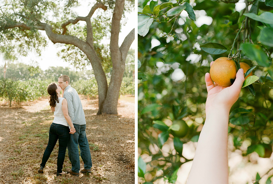 09_orange_picking_engagement_session_fine_art_weding_photographer_central_florida